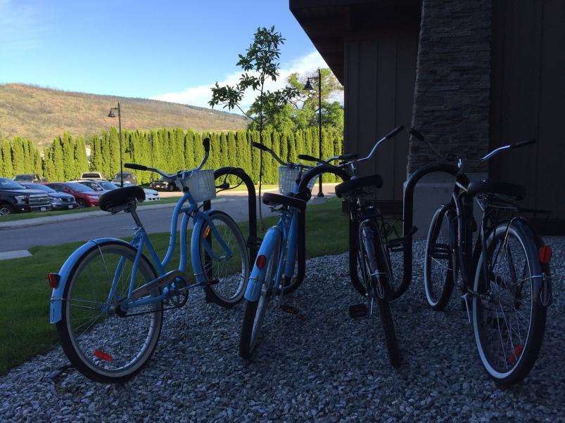 Cute cruiser bikes for rent.
