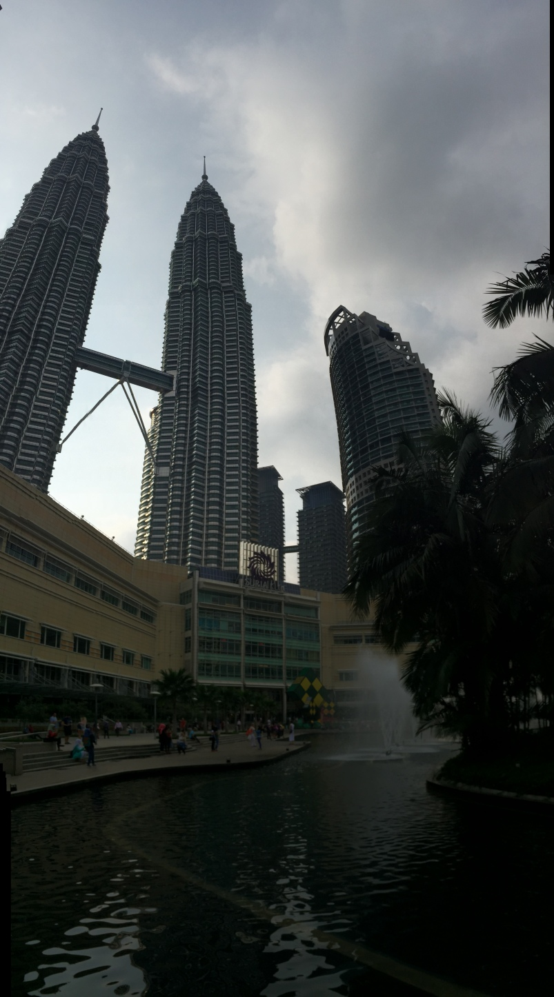 View of the Twin Towers from the park.