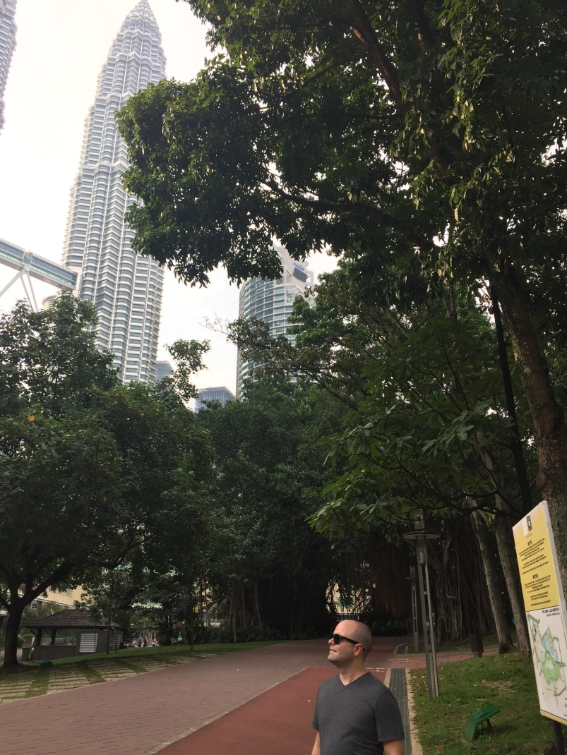 view of the towers in the park.