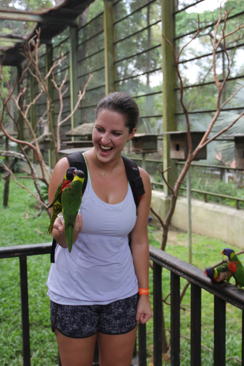 These parrots were feisty. You can't see in the photo, but I'm holding a little cup of honey milk.