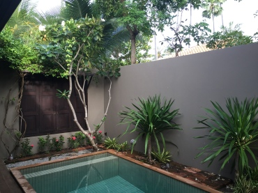 Lovely little private pool in Julia & Brian's villa.
