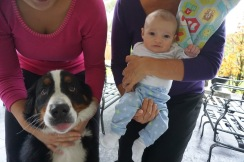 """Campbell meets """"Auntie"""" Marlowe, my sister's pup!"""